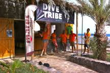 dive tribe